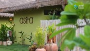 Leisure Access : Asita Eco Resort, Amphawa