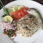 Food@Asita (3/66)