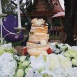 งานแต่งงาน (14/180)